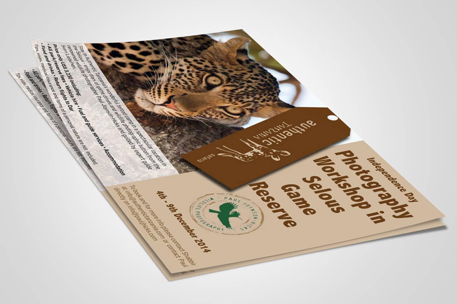 cheetah on postcard